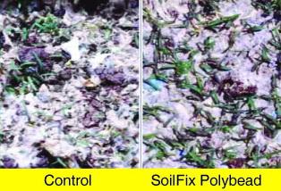 Soilfic Polybead_1