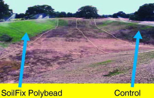 Soilfic Polybead_2